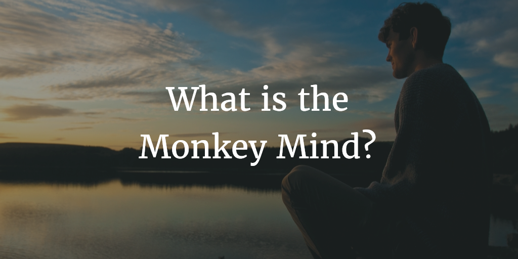 What is the Monkey Mind? (Animated Video)